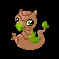 Image of Bonsai Baby