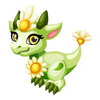 Image of Bright Daisy Baby