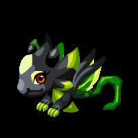Image of Dark Leaf Baby