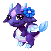 Image of Nightflower Baby