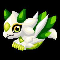 Image of White Lotus Baby